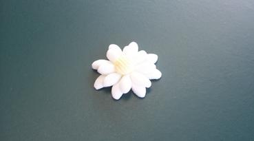 edible sugarpaste flower small daisy